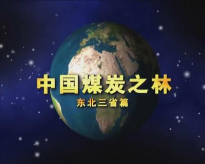 中国煤炭之林——东北篇