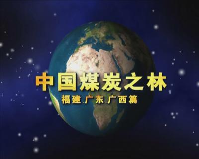 中国煤炭之林——福建广东广西篇