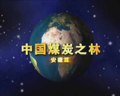 中国煤炭之林——安徽篇