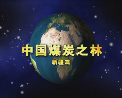 中国煤炭之林——新疆篇