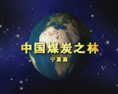 中国煤炭之林——宁夏篇