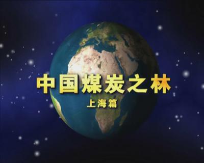 中国煤炭之林——上海篇